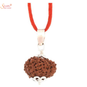 Natural And Certified 13 Mukhi/Face Rudraksha In Sterling Silver