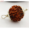 5 mukhi/face rudraksha pendants