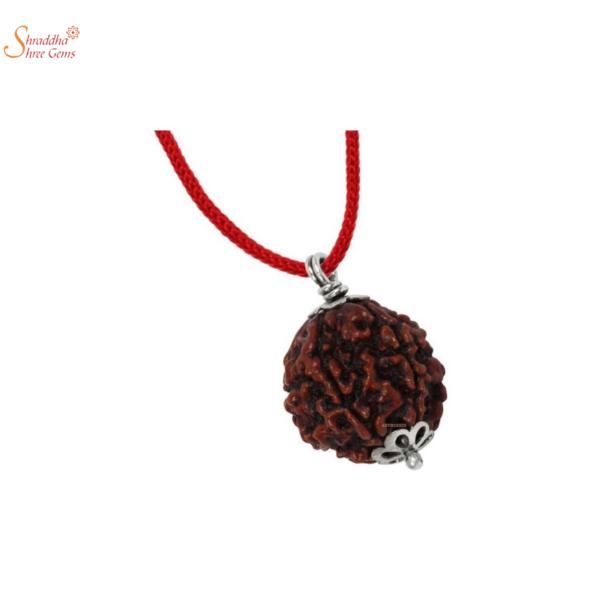 7 mukhi/face rudraksha pendant in sterling silver