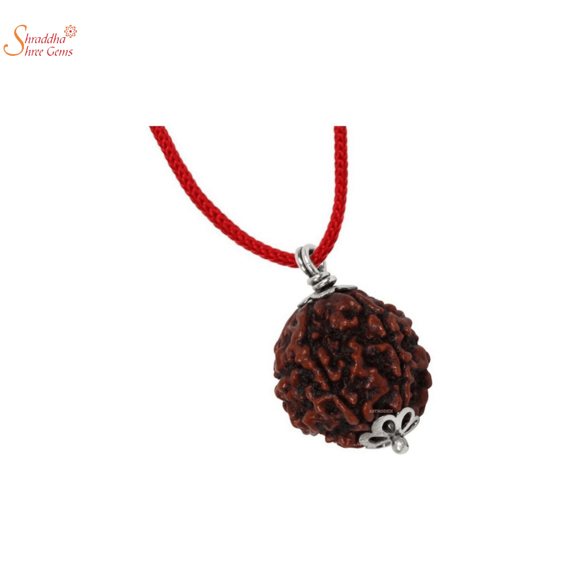 Natural And Certified 7 Mukhi/Face Rudraksha Pendants In Sterling Silver