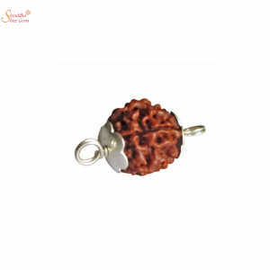 Natural And Certified 11 Mukhi/Face Rudraksha Pendants In Sterling Silver