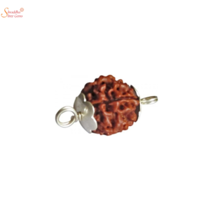 Natural And Certified 12 Mukhi/Face Rudraksha Pendants In Sterling Silver