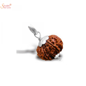 Natural And Certified 8 Mukhi/Face Rudraksha Pendants In Sterling Silver