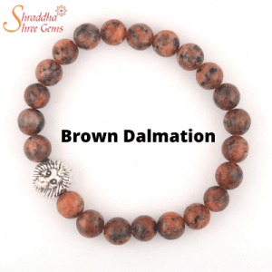 Brown Dalmation Gemstone Bracelet