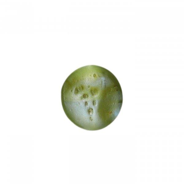 9.11 Ratti / 8.20 Carat Natural Loose Cat's Eye (Crysoberyl) Gemstone