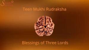<strong>Three Mukhi rudraksha: Blessings of three Lords</strong>