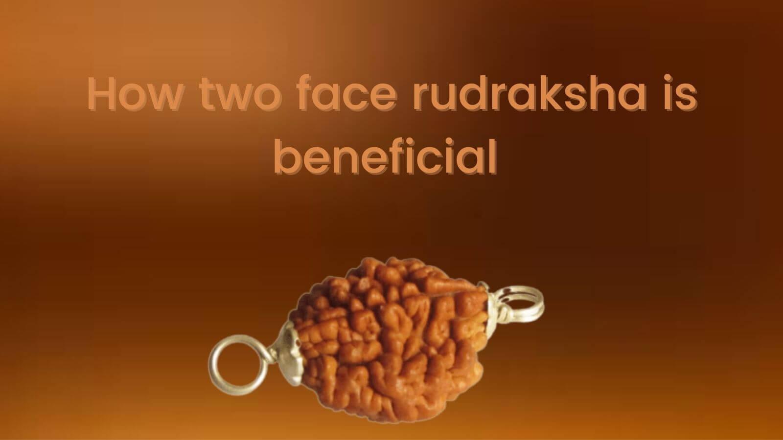 Two mukhi rudraksha and its Power