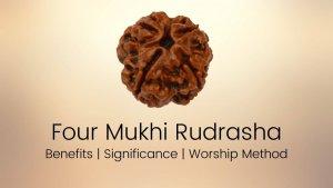 Four Mukhi Rudraksha-Make your mind more powerful: