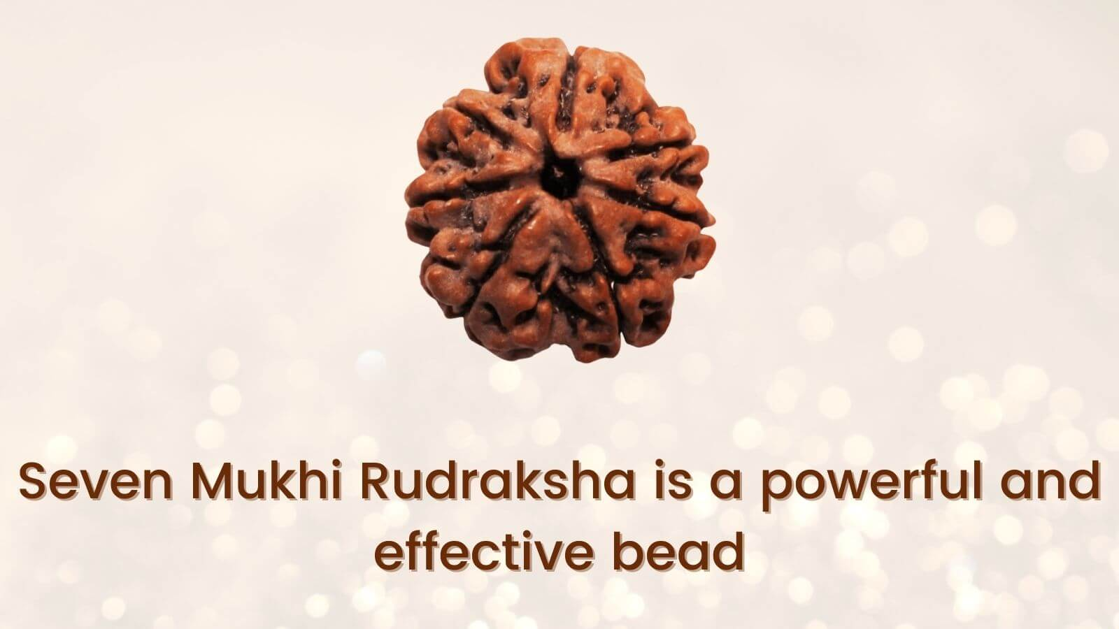 <strong>Most powerful and effective bead: Seven Mukhi Rudraksha</strong>