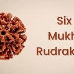 Six Mukhi Rudraksha and its blessings:
